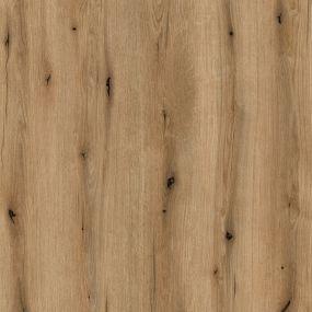 Coast Evoke Oak