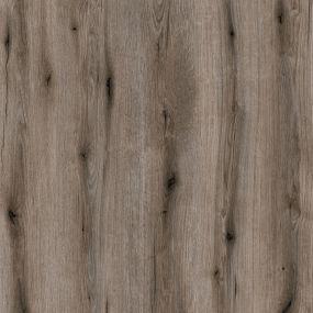 Fossil Evoke Oak